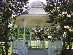 Gazebo by Magnolia Trees